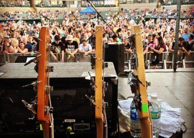 1-Veritlce Horizon Guitars